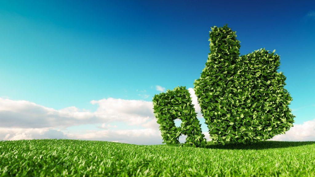 Paysage nature développement durable