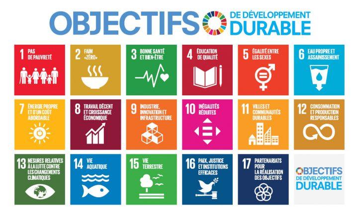 17 pbjectifs de développement durable Nations Unies