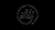 logo look du jour